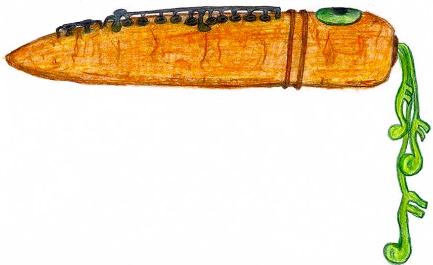 Flute Carrot